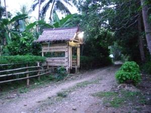 Alasugi/Lasugi/Balla yang dibangun di depan rumah (dok. pribadi)